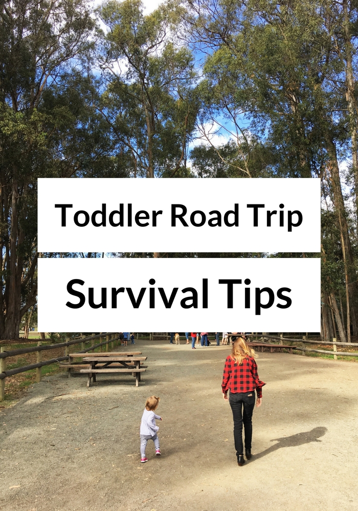 toddler-roadtrip-survival-tips